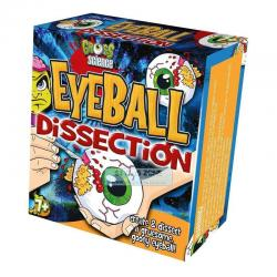 John Adams Gross Science Eyeball Dissection Kids Make & Create Learning All Eyeb