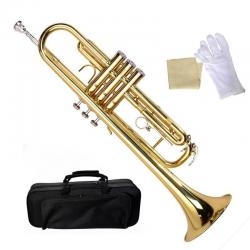 Bb Beginner Trumpet in Gold Silver Black Blue Purple or Red +Care Kit
