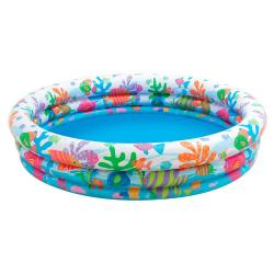 Pileta Inflable Intex Fishbowl Peces Bebes Segura + Inflador