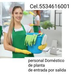 Servicios domesticos Naucalpan